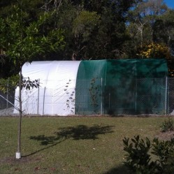 South Kempsey Community Gardens
